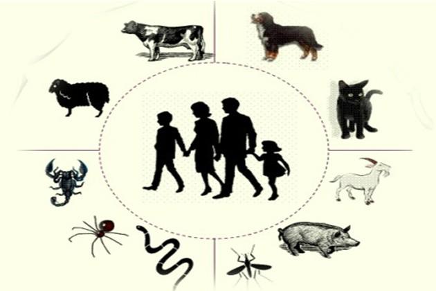 بیماریهای مشترک انسان و حیوان مورد بررسی قرار گرفتند