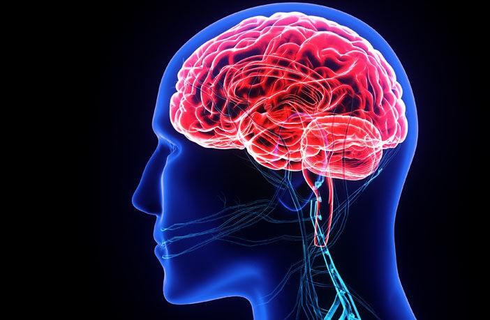 محققان دانشگاه «نورث کالیفرنیا»بررسی کردند:آیا نشستن مداوم اختلالی در ارائه اکسیژن به مغز ایجاد می کند؟