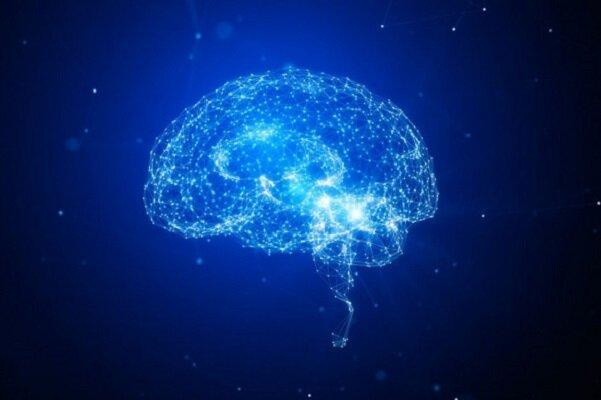 ارتباط التهاب مغز با ابتلا به زوال عقل