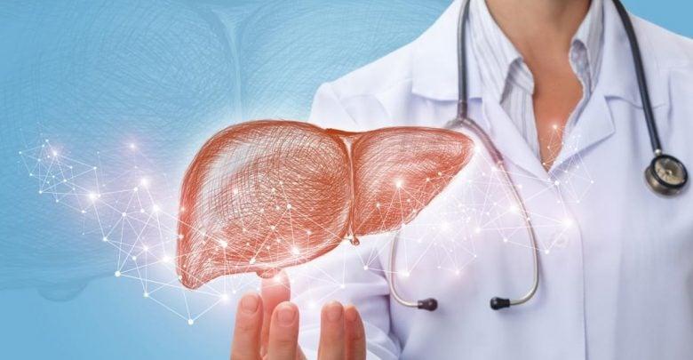 دانشمندان آمریکایی: اختلال در عملکرد کبد منجر به آسیب دیدن بافت قلب می شود